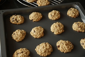 Oatmeal Cookies - fresh out of the oven